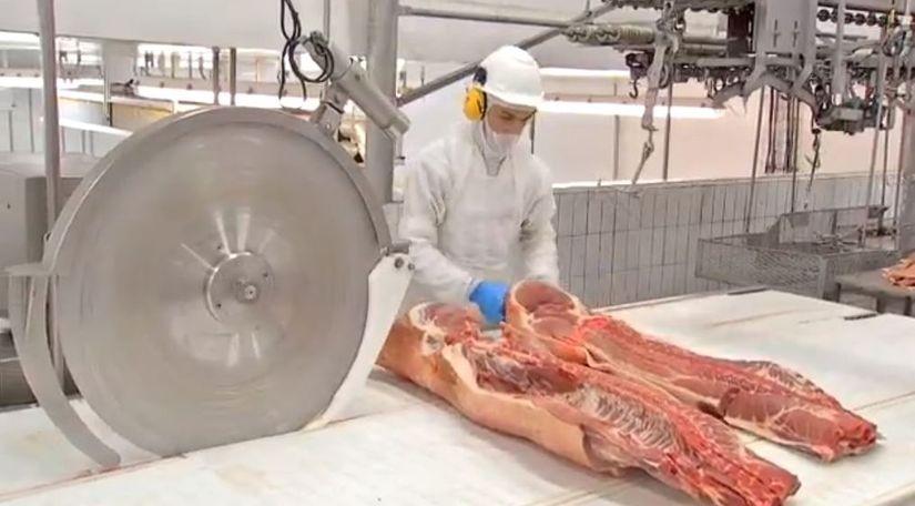 Vendas de carne suína ao exterior sobem 24,5% no primeiro semestre de 2019