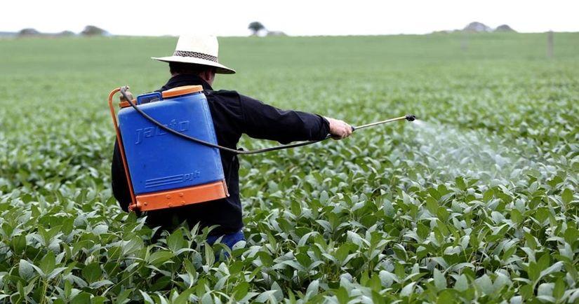 Justiça Federal suspende registro de mais de 60 agrotóxicos