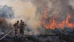 Monitoramento e combate ao Incêndio na região de Sorriso no Norte do Estado - Bombeiro e fogo - Foto por: Mayke Toscano/Secom-MT