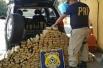 Motorista de Rondonópolis é preso com 300 kg de maconha na BR-174
