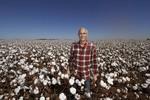 Profissionalismo da cadeia produtiva do algodão impressiona visitantes na expedição promovida pela A