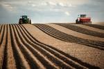 Agropecuária gerou mais de 36 mil novos postos de trabalho em junho