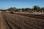 Estrada Verde será ligação alternativa entre Cuiabá e Sul do estado