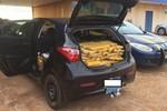 Motorista de carro com placas de Rondonópolis é preso com 300 kg de maconha