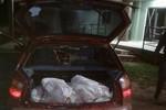 Motorista é flagrado pela Polícia Ambiental com 125 kg de pescado