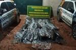 Polícia apreende mais de 300 kg de pescado irregular em propriedades de Itiquira