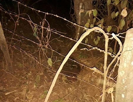 Local onde o corpo foi encontrado pelos moradores. Foto - rede social