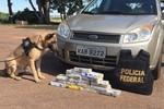 Com cães farejadores, PRF e PF apreendem droga escondida em lataria de veículo