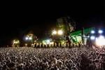Produtores de algodão de MT apelam para colheita noturna