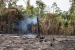 Terras indígenas na Amazônia têm maior número de queimadas desde 2011