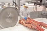 Produção de carne suína da China cai 5,5% no 1º semestre em meio a surto de peste