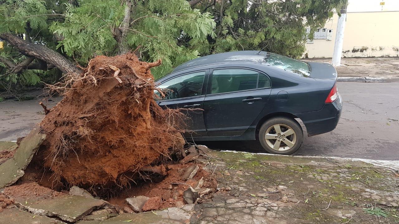 Veículo atingido pela árvore cruzamento da Avenida Cuiabá com a Rua Pedro Ferrer. (Foto: rede social)