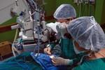 Inca convoca doadores de medula óssea para atualizar dados cadastrais