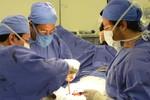 Brasil aumenta doação de órgãos e bate recorde em transplantes
