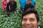 Agricultores indígenas plantam quase 18 mil hectares de grãos em Mato Grosso