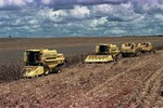 Tecnologia aumenta produtividade agropecuária e diminui mão de obra
