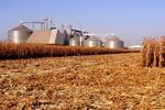 FCO Rural ainda tem R$ 246 milhões para crédito para o agronegócio