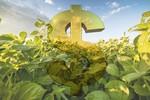 BNDES prorroga prazo para renegociação de dívidas de crédito rural