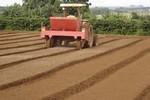 Produtividade da agropecuária cresce 3,43% ao ano