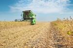 Agronegócio deixa de pagar R$ 6 bilhões por ano em impostos